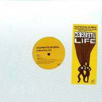 MOMENTS OF SOUL - Celebrate Life : WAVE MUSIC (US)