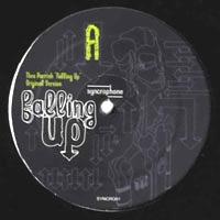 THEO PARRISH - Falling Up (Original Version & Remixes) : 2x12inch