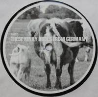 SHED - These Kinky Dudes From Germany : 12inch