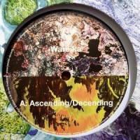 WAREIKA - Ascending/Decending : 12inch