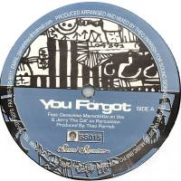 THEO PARRISH - You Forgot / Dirt Rhodes : SOUND SIGNATURE (US)