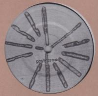 BASIC CHANNEL - Phylyps Trak II : 12inch
