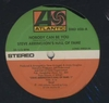 STEVE ARRINGTON'S HALL OF FAME - Nobody Can Be You / Weak At The Knees : 12inch