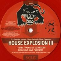 KAMI-SAKUNOBE HOUSE EXPLOSION K-S.H.E - House Explosion III : 10inch