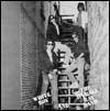 WHITE BOY AND THE AVERAGE RAT BAND - White Boy And The Average Rat Band : LP