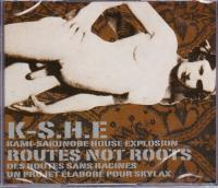 KAMI-SAKUNOBE HOUSE EXPLOSION K-S.H.E - Routes Not Roots : SKYLAX (FRA)