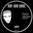 V.I.V.E.K - Pulse / Roots : 12inch