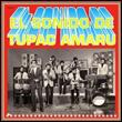 VARIOUS - El Sonido De Tupac Amaru : MASSTROPICAS (US)