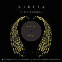 RSS DISCO & SUGARWATER - Lovebird : MIREIA (GER)