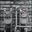 OREN AMBARCHI AND JIM O'ROURKE - Indeed : LP