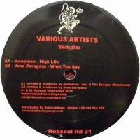 VARIOUS - Robsoul Ltd 31 Sampler : 12inch