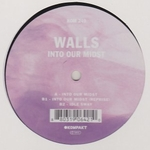 WALLS - Into Our Midst : 12inch