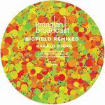 HARALD BJORK - Bigfield Remixed : 12inch