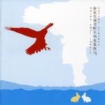 SUFJAN STEVENS - Enjoy Your Rabbit : CD