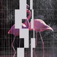 NHK'Koyxeи - Dance Classics Vol.I LP : LP