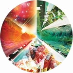 PSYCHEMAGIK - Valley Of Paradise Remixes 12inch Picture Disc : 12inch