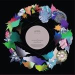 SOFT ROCKS - Talking Jungle / Obo (REMIX) : 12inch