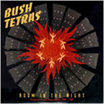 BUSH TETRAS - Boom In The Night : LP