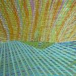 SONNYMOON - Wild Rumpus : PLUG RESEARCH (US)