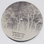 TRANSILVANIAN GALAXI - You Always Have Been The Caretaker : 12inch