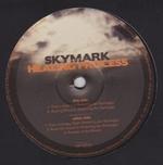 SKYMARK - Healing Process EP : 12inch