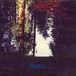 DNTEL - Aimlessness (Vinyl+CD) : 2LP