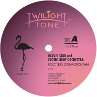 DEAVID SOUL AND EXOTIC LIGHT ORCHESTRA - Rootless Cosmopolitan / Step Across The Border : TWILIGHT TONE (JPN)
