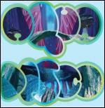 SEAHAWKS - Aquadisco : OCEAN MOON (UK)