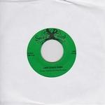 GEORGE SMALLWOOD - Lady Disco Demo 45 : 7inch