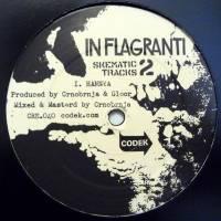 IN FLAGRANTI - Skematic Tracks Vol Two : CODEK (SWISS)