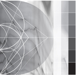 RICARDO DONOSO - Assimilating the Shadow : DIGITALIS <wbr>(US)
