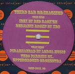 VARIOUS - Third Ear Re-imagined : 12inch