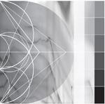RICARDO DONOSO - Assimilating the Shadow : DIGITALIS (US)