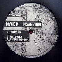 DAVID K - Insane Dub : DAME MUSIC (GER)