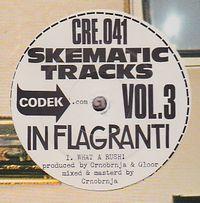 IN FLAGRANTI - Skematic Tracks Vol. 3 : CODEK (SWISS)