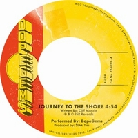 DOPEGEMS - Journey To The Shore B/w Quasar : TRAVELLER RECORDS (FIN)