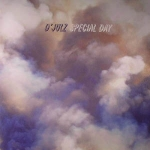 D'JULZ - Special Day : 12inch