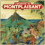L'ORCHESTRE DU MONTPLAISANT - L'orchestre du Montplaisant : LP