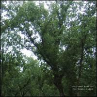 JULIANNA BARWICK - The Magic Place : LP