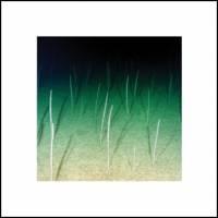 MIKE WEIS - Loop Current /Raft : LP