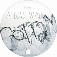 COTTAM - The Long Walk / The Other World : 12inch