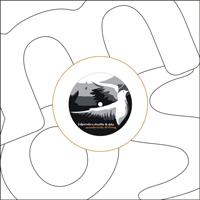[A]PENDICS.SHUFFLE & DILO - Wonderfully Drifting : 12inch