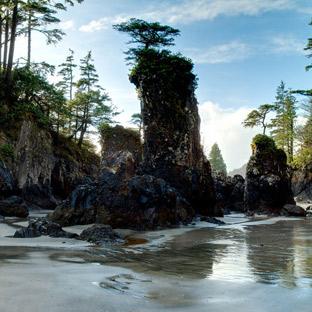 SEGUE - Pacifica : SILENT SEASON (CAN)