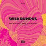 WILD RUMPUS - Wild Remix Ep : BITCHES BREW (UK)