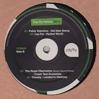 VARIOUS - City Fly Visions Vol.2 : CITY FLY (UK)