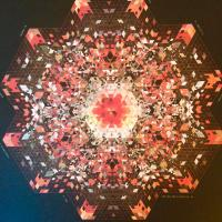 GOLD PANDA - Half Of Where You Live : 2LP