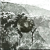 CLAUDIO PRC & NESS - The World Outside : PHORMA (SWE)