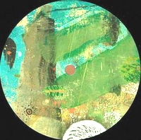 VARIOUS ARTISTS - PARAGES 005 : 12inch