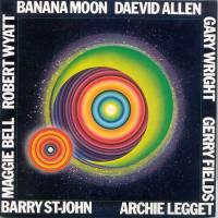 DAEVID ALLEN - Banana Moon : LP