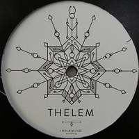 THELEM FT. T-MAN - Bring Me Down : 12inch